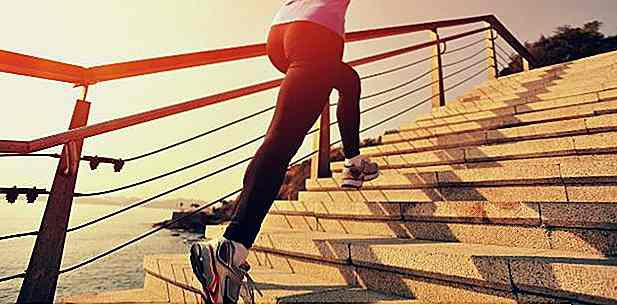 HIIT Training on the Ladder - Les meilleurs conseils