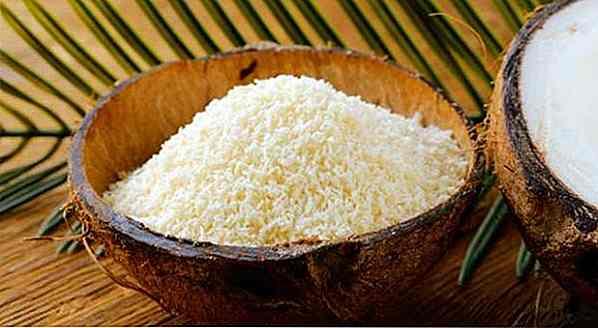 Calorii nucă de cocos și proprietăți dietetice - Uleiul