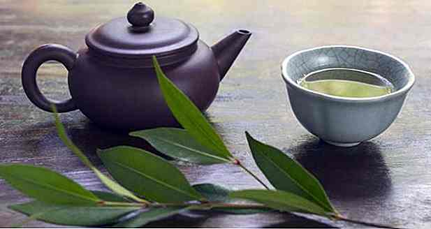 Laurel Leaf Tea - Che cosa serve, come e vantaggi