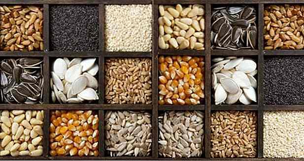 Semillas Comestibles Tipos Beneficios Cómo Usar Y Recetas Es Detiradugi Com