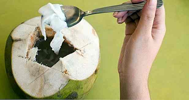 Calories de noix de coco - Types, portions et pourboires