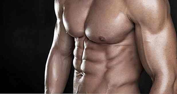 modo per perdere grasso all allanca