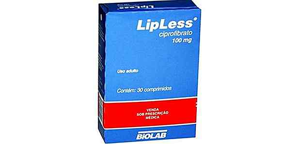 Are Lipless Really Slim?
